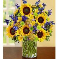 China Fields of Europe for Summer Deluxe wholesale
