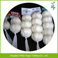 China Chinese fresh garlic natural garlic wholesale