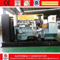 China 100KW Natural Gas Generator Price on sale