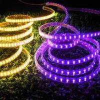 China CE & RoHS approved! LED Strip Light SMD 5050 Double Row Purple wholesale