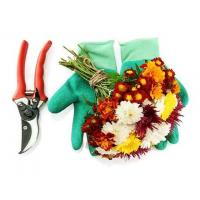 China Top Quality Garden Pruning Scissor KHGPSS-001 wholesale
