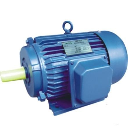Electric Motor 1hp 340hp Y Three Phase Cast Iron Housing
