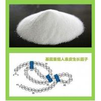 Wholesale Epidermal Growth Factor (rh-EGF) from china suppliers