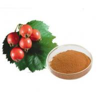 Rose hips Extract