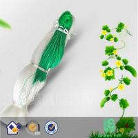 Wholesale garden mesh for climbing plants from china suppliers