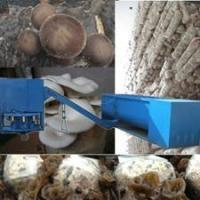 Growing mushrooms for profit images buy growing mushrooms for profit - Growing oyster mushrooms profit ...