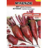 Buy cheap McKenzie Seeds Beet Cylindra Formanova from wholesalers