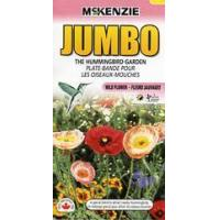 Wholesale McKenzie Seeds The Hummingbird Garden from china suppliers