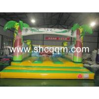 Wholesale Inflatable Bouncer CQTC-008 from china suppliers