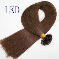 China 2016519133920Double Drawn U-Tip Hair Extenions wholesale