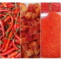 China Red chilli Dice wholesale