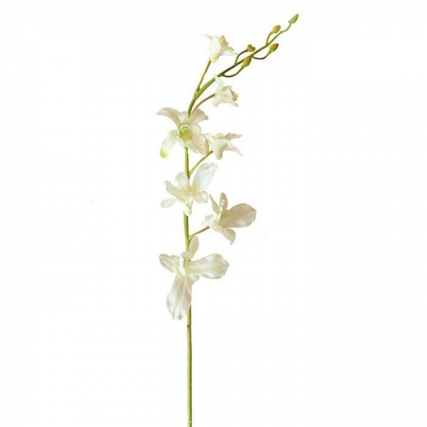 Quality Real Touch Flower Dendrobium Orchid in Cream for sale