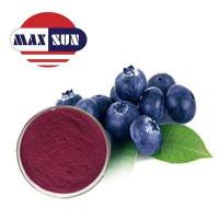 China Sun Series Bilberry Extract wholesale