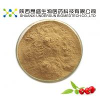 China Rosehips Hips Powder wholesale