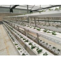 China Hydroponic Kits Hydroponic Home and Hobby System wholesale