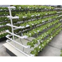 China Hydroponic Kits wholesale