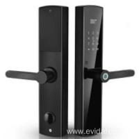 China EVDTF5237 smart cloud biometric lock wholesale