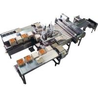 China Poultry egg grading packing machine wholesale