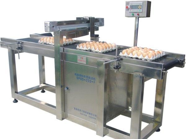 Quality Poultry eggs inkjet printer for sale