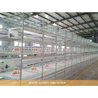 China Broiler chicken cage system wholesale