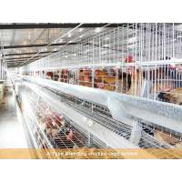 China Breeding chicken cage system wholesale