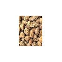 Buy cheap Amomi Seed from wholesalers