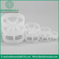 China Pall Ring Plastic Pall Ring Random Packing wholesale