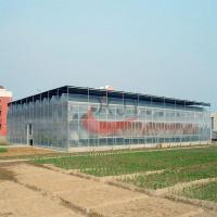 China Agricultural Polycarbonate Greenhouse wholesale