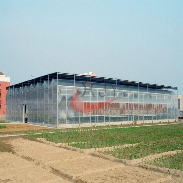 China Agricultural Polycarbonate Greenhouse