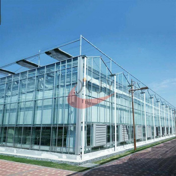 China Commercial Agricultural Glass Greenhouse for Flower and Vegetables