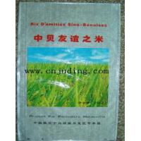 China pp woven bag for packing sand rice flour and sugar wholesale