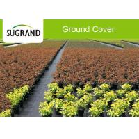 China 100GSM Plastic Black Landscape Weed Mat Ground Cover Fabric For Garden wholesale